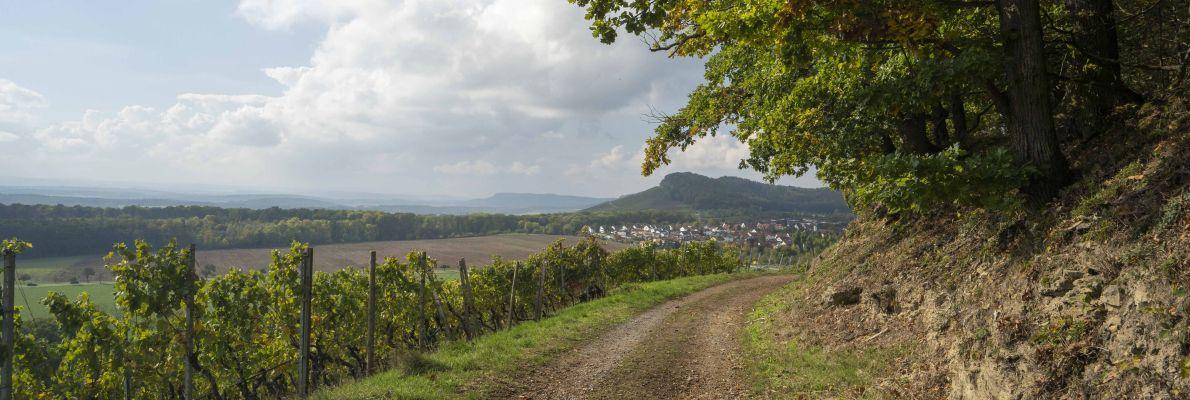 Slider Blick vom oberen Waldweg auf den Ort