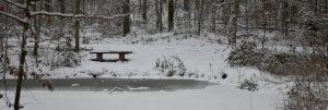 Slider Winterstimmung 1