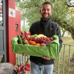Kindertagesstätten werden wieder mit frischem Obst beliefert
